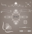 vintage decorative elements vector image