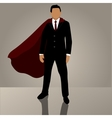 Businessman in suit or jacket vector image