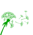 Banner with dandelion vector image