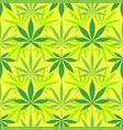 cannabis marijuana leaves seamless pattern vector image