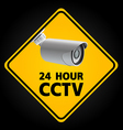 CCTV Security Camera vector image