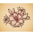 Vintage flower Hand drawn retro sketch lily vector image