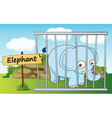 Cartoon Zoo elephant vector image vector image