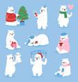 christmas white bear animal cute beauty vector image