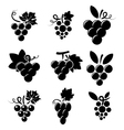 icons of grapes vector image vector image