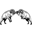 two fighting rams black white vector image vector image