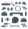 accessories for fitness silhouette icons vector image