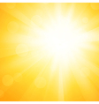 Yellow sun background vector image