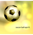 Vintage soccer ball vector image