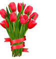 Celebration background with red tulips and ribbons vector image vector image