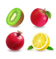 juice fruits icons realistic set vector image