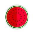 watermelon red green icon fla vector image