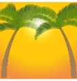 Two palm tree on orange background vector image