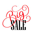 big sale calligraphy and lettering text on white vector image