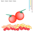 Fresh Cherry Tomatoes with Vitamin C A and K vector image