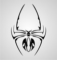 Spider Tattoo vector image