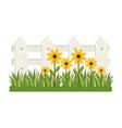 plant flower garden vector image