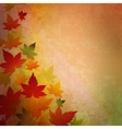 Abstract autumn vintage background vector image