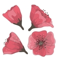 set of hand drawn flowers vector image vector image