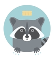 Animal set Portrait in flat graphics - Raccoon vector image