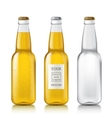 Set realistic bottles vector image