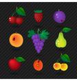 fruit set vector image