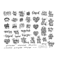 big set of black and white handwritten lettering vector image