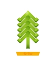 Fir Tree Green vector image