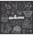 Autumn season set Hand drawn doodles and vector image