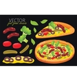 Isolated sausage pizza Fast food set vector image