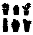 types of cactus and flowers icon set simple style vector image