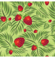 semless pattern with strawberry vector image vector image