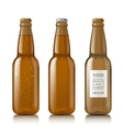 Templates realistic transparent bottles vector image vector image