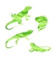 lizard iguana watercolor set vector image
