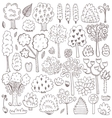 Sketch pattern with trees vector image