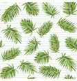 Exotic tropical palm green leaves seamless pattern vector image