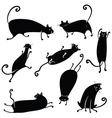 silhouettes of cute cats vector image vector image