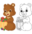 Bear coloring page vector image