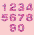 number floral pink cute decorative elements vector image