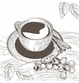 Cup of coffee with cinnamon and berry vector image