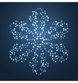 Bright Star Snowflake vector image vector image