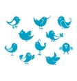 Cute little cartoon bird icons vector image