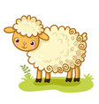 curly sheep stands on a glade vector image