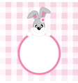 rabbit pink vector image