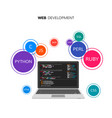 web development infographic programming and vector image