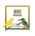 Birds Frame Flat Design vector image