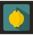 Yellow quince fruit icon flat style vector image