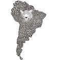 Camouflage Jaguar on the map of South America vector image