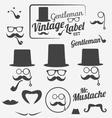 Retro Hipster Gentlemen Icon Set vector image
