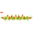 border of leaves and berry of rosehip plant vector image